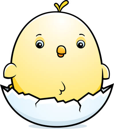 baby chicken: A cartoon illustration of a baby chicken hatching from an egg.