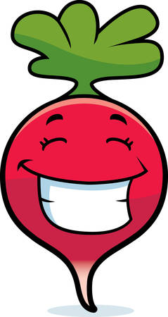 A cartoon illustration of a radish smiling and happy. Çizim