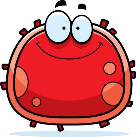 red blood cell: Una ilustraci�n de dibujos animados de un gl�bulo rojo sonriendo.