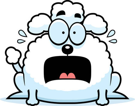 perro asustado: Un ejemplo de la historieta de un pequeño caniche mirando aterrorizado. Vectores