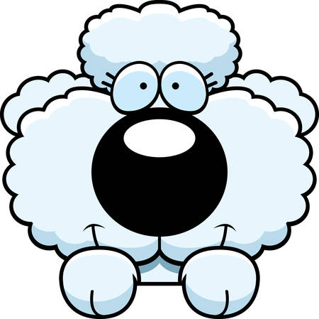 A cartoon illustration of a poodle puppy peeking over an object.