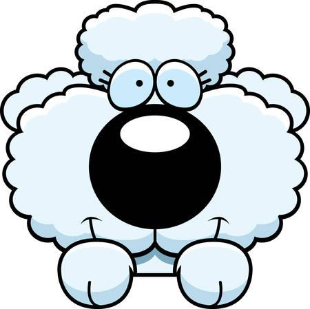 peekaboo: A cartoon illustration of a poodle puppy peeking over an object.