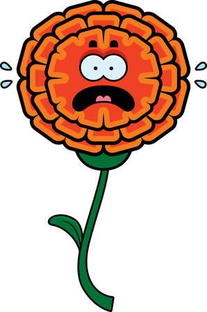 cempasuchil: Una ilustraci�n de dibujos animados de una maravilla que parece asustada.