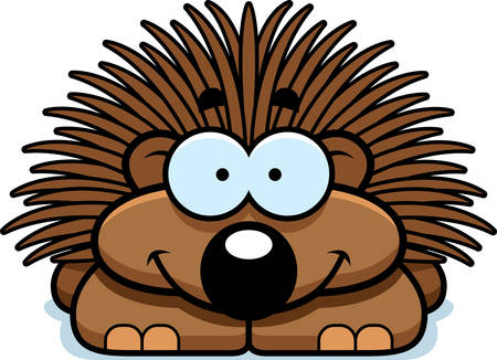 porcupine: A cartoon illustration of a little porcupine happy and smiling. Illustration