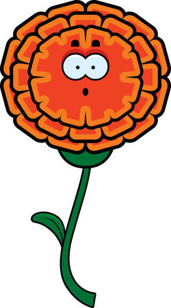 A cartoon illustration of a marigold looking surprised.