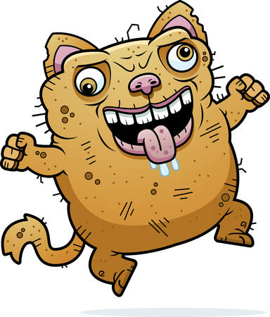 hideous: A cartoon illustration of an ugly cat looking crazy.