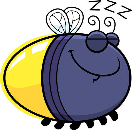 firefly: A cartoon illustration of a firefly sleeping.