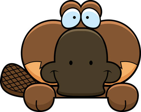 A cartoon illustration of a little platypus peeking over an object. Stok Fotoğraf - 42996219