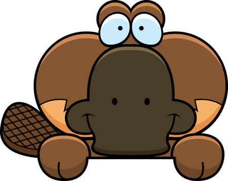 peering: A cartoon illustration of a little platypus peeking over an object.