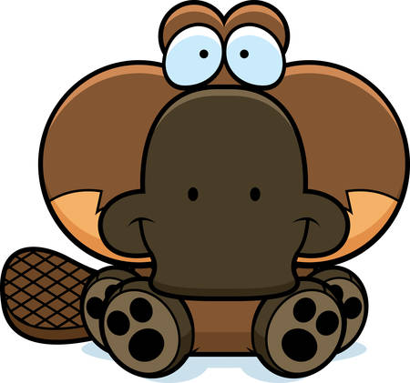 platypus: A cartoon illustration of a little platypus sitting and smiling. Illustration