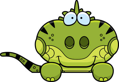 A cartoon illustration of a iguana peeking over an object. Stok Fotoğraf - 42996015