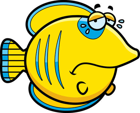 butterflyfish: A cartoon illustration of a butterflyfish sad and crying.