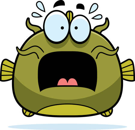 catfish: A cartoon illustration of a catfish looking scared. Illustration