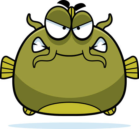 catfish: A cartoon illustration of a catfish looking angry.