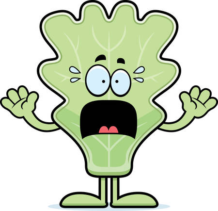 leaf lettuce: A cartoon illustration of a lettuce leaf looking scared. Illustration