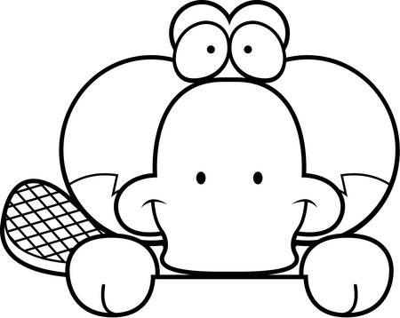 peekaboo: A cartoon illustration of a little platypus peeking over an object.