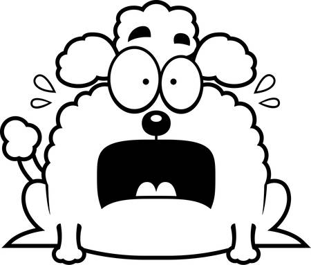 terrified: A cartoon illustration of a little poodle looking terrified.