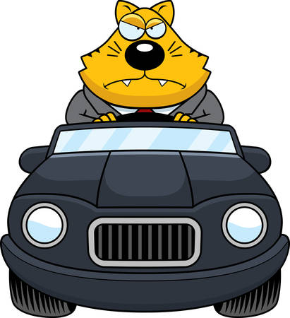 cat suit: A cartoon illustration of a fat cat driving a car with an angry expression. Illustration