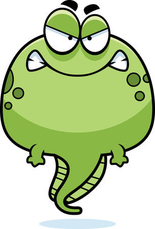 tadpole: A cartoon illustration of a tadpole looking angry.