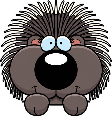 peering: A cartoon illustration of a porcupine peeking over an object. Illustration