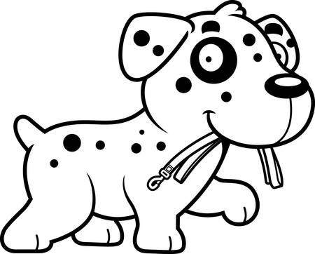 dalmatian: A cartoon illustration of a Dalmatian walking with a leash in his mouth.