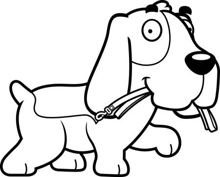 hound: A cartoon illustration of a Basset Hound walking with a leash in his mouth.