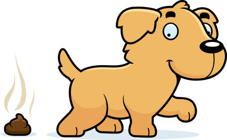 feces: A cartoon illustration of a Golden Retriever pooping.