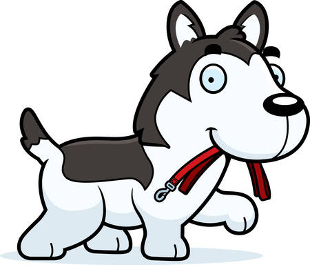 leash: A cartoon illustration of a Husky walking with a leash in his mouth.