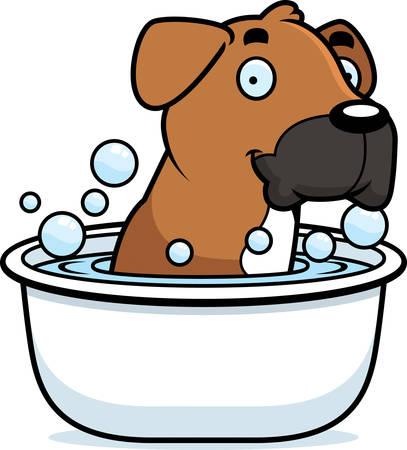 boxer dog: A cartoon illustration of a Boxer dog taking a bath.