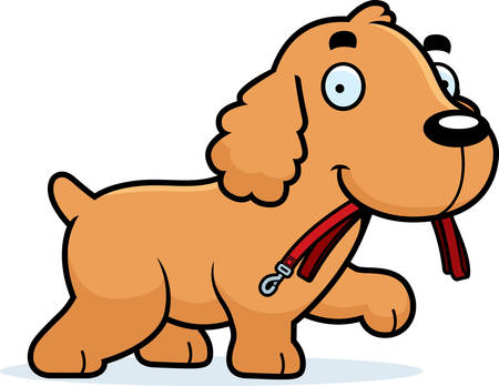 cocker: A cartoon illustration of a Cocker Spaniel walking with a leash in his mouth.