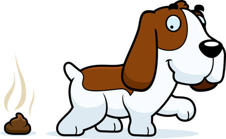 feces: A cartoon illustration of a Basset Hound pooping.