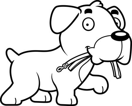 boxer dog: A cartoon illustration of a Boxer dog walking with a leash in his mouth.
