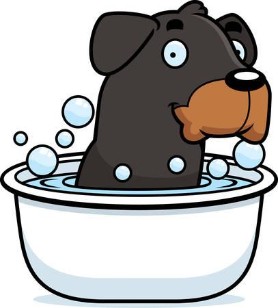 rott: Una ilustraci�n de dibujos animados de un Rottweiler de tomar un ba�o.