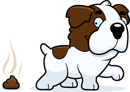 feces: A cartoon illustration of a Saint Bernard pooping. Illustration