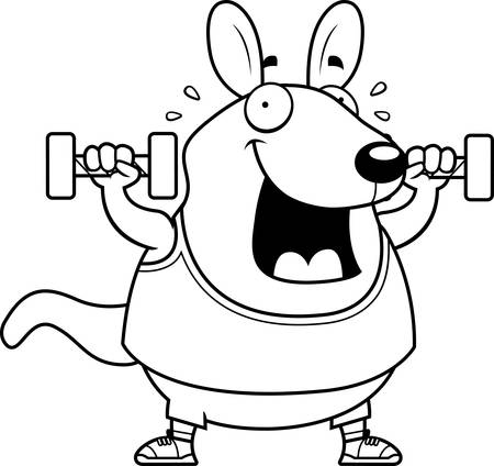wallaby: A cartoon illustration of a wallaby lifting dumbbell weights.