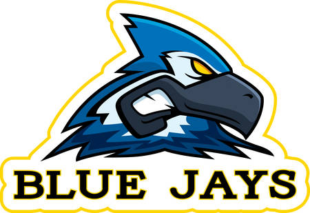 A cartoon illustration of a blue jay mascot head.
