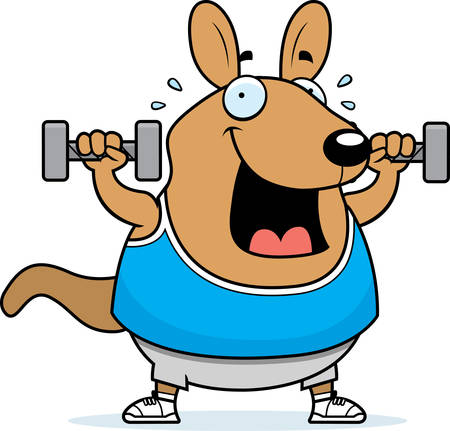 A cartoon illustration of a wallaby lifting dumbbell weights.