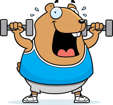 A cartoon illustration of a hamster lifting dumbbell weights.