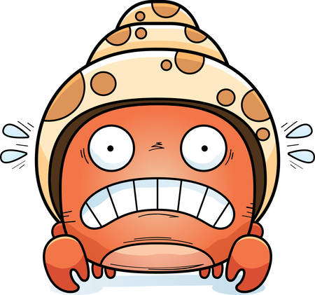 A cartoon illustration of a hermit crab looking scared.