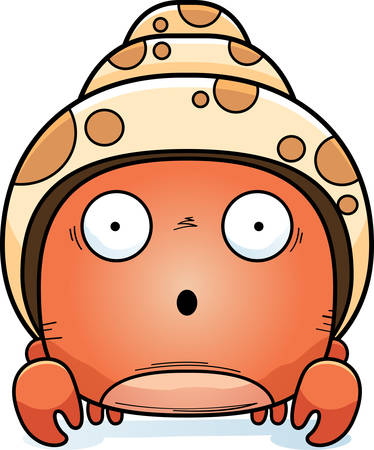 A cartoon illustration of a hermit crab looking surprised. Ilustracja