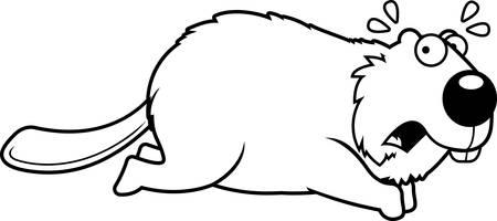 une illustration de bande dessinée d & # 39 ; un castor courir en cours d Vecteurs