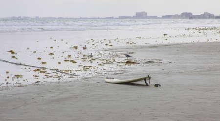 Surfboard left on the beach at dusk Stok Fotoğraf - 21131285