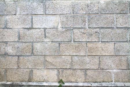 背景に灰色のコンクリート ブロック壁