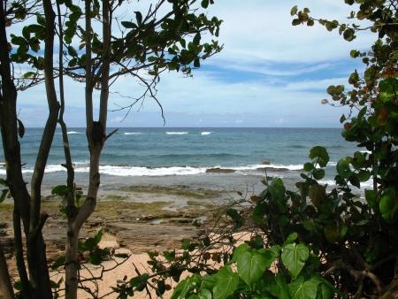 Puerto Rican Beach Scene Stok Fotoğraf