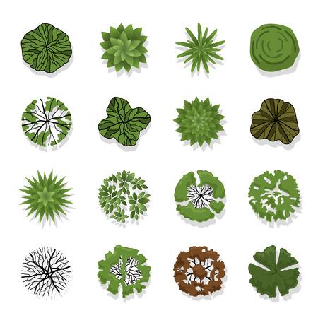 Árboles vista superior de ilustración paisaje Ilustración de vector