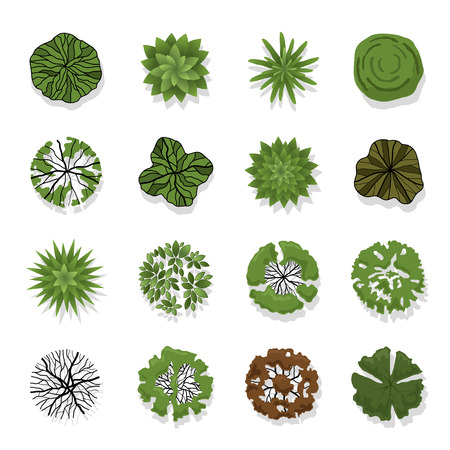 of view: Trees top view for landscape illustration