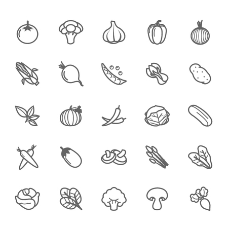Set of Outline stroke Vegetable icon Vector illustration