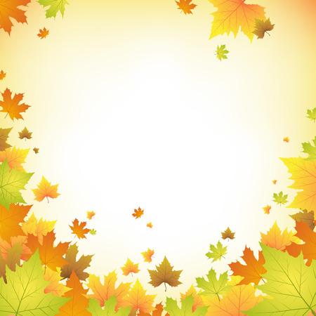 background herfst: Herfst achtergrond