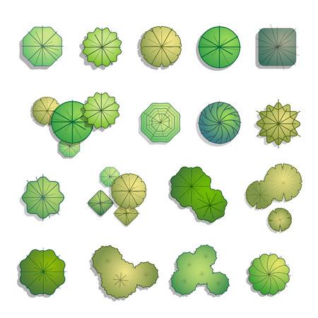 Árboles visión superior por un paisaje de ilustración vectorial de diseño