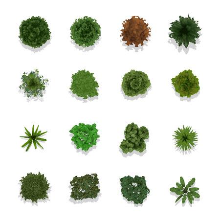 hojas de arbol: �rboles vista superior de ilustraci�n vectorial paisaje